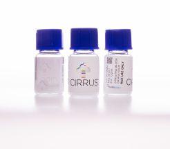 Cirrus™ RNA